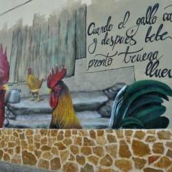 Cuando el gallo canta